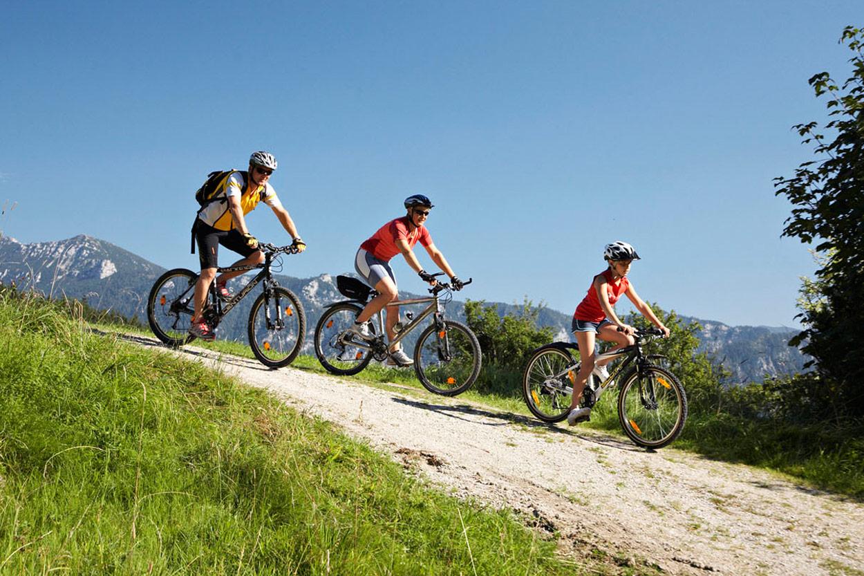 Gerne stellen wir Ihnen Mountainbikes und Citybikes zur Verfügung